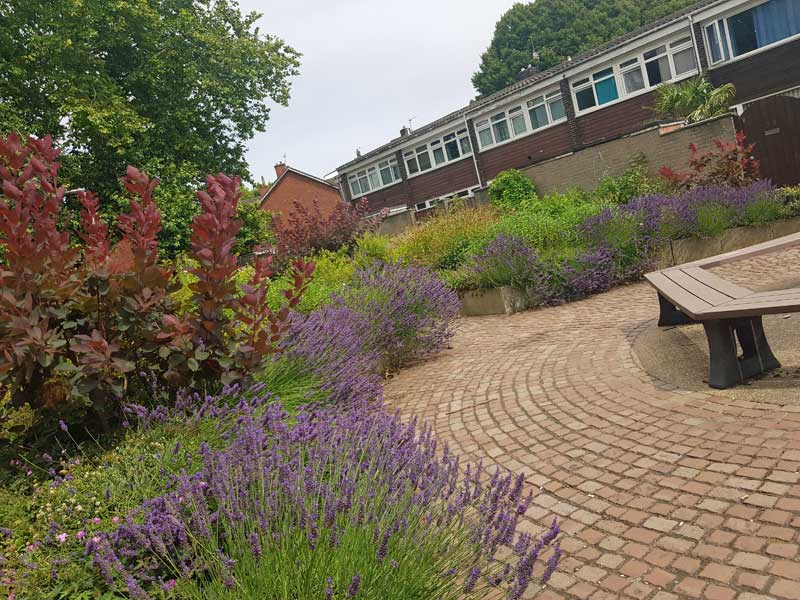 Empowering Communities at Globe Place Gardens in Town Close, Norwich